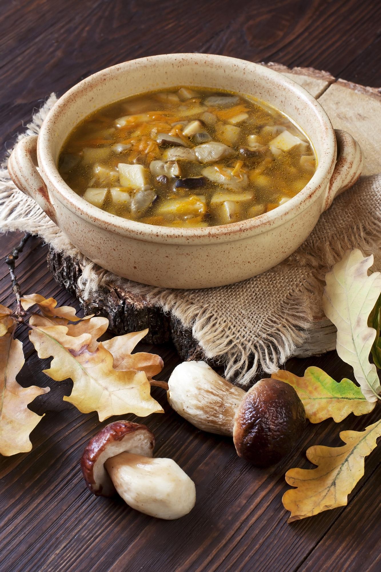 mushroom soup Mushroom Stew