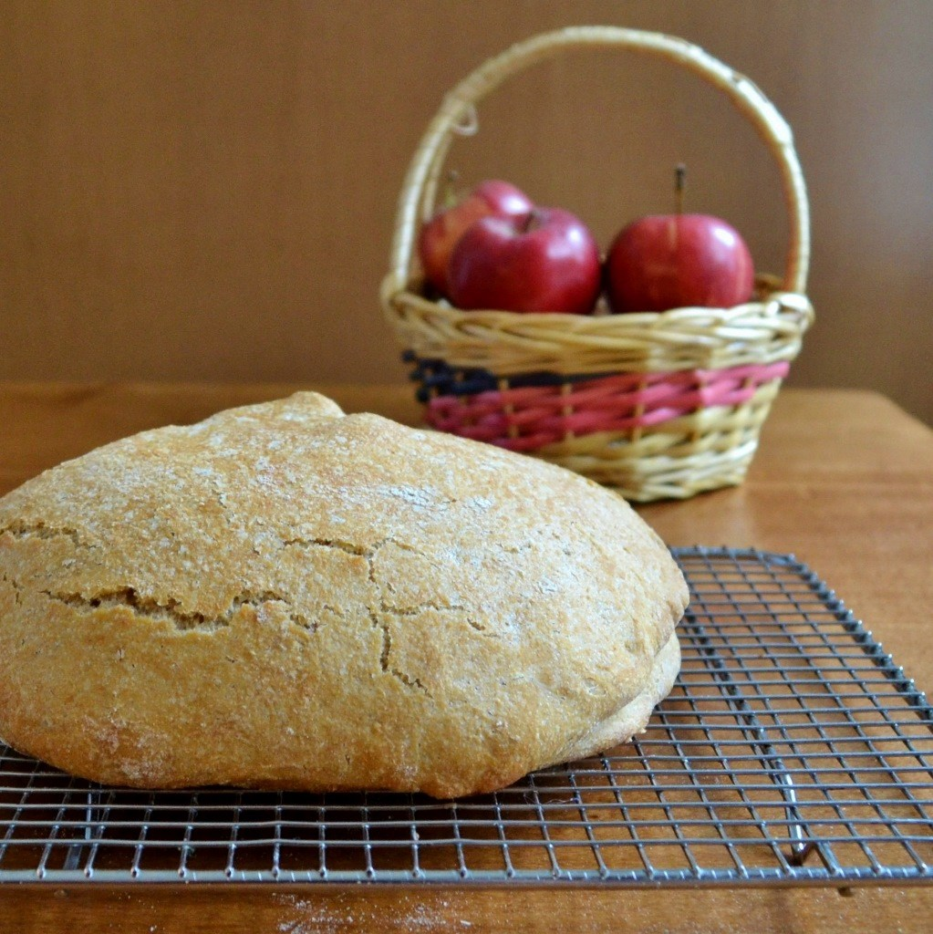 apple pie bread 3 rfrd 4.jpgfit10232c1024ssl1 20 Real Food Thanksgiving Recipes