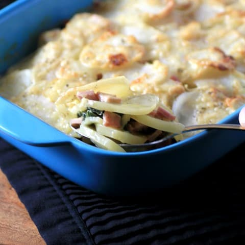 Canadian Bacon Swiss Chard Potato Gratin by Noshing With The Nolands 480x480 1 20 Gluten-Free Thanksgiving Recipes